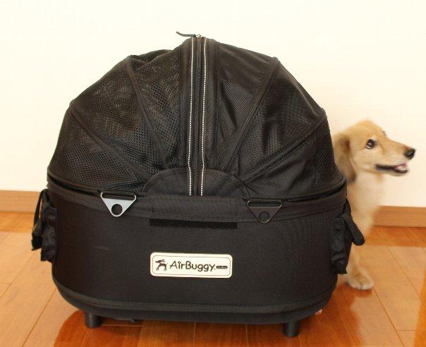 犬用カートどれを選べば良いか迷われている方へ!犬用カートの選び方~Air buggy for dogの使い心地~