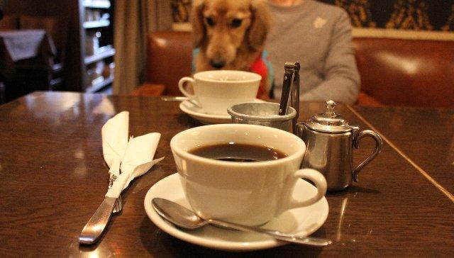 コーヒー@HUIT