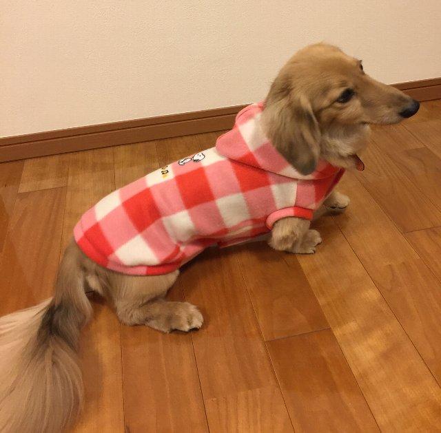 自作前開き犬服
