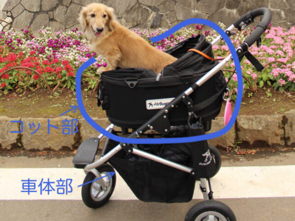 Buggy for dog