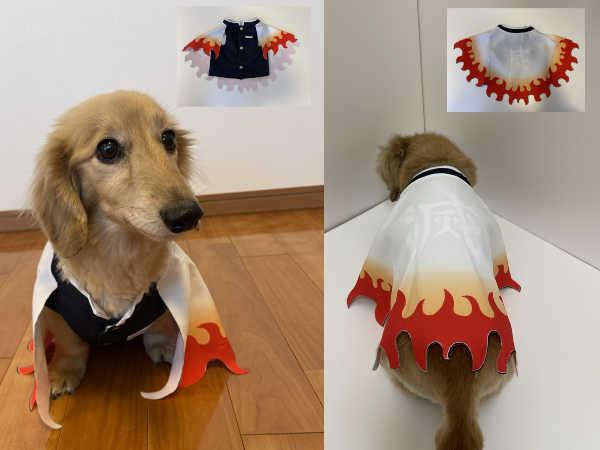 鬼滅の刃犬服-前後写真
