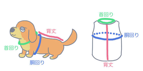 犬服サイズ測る場所