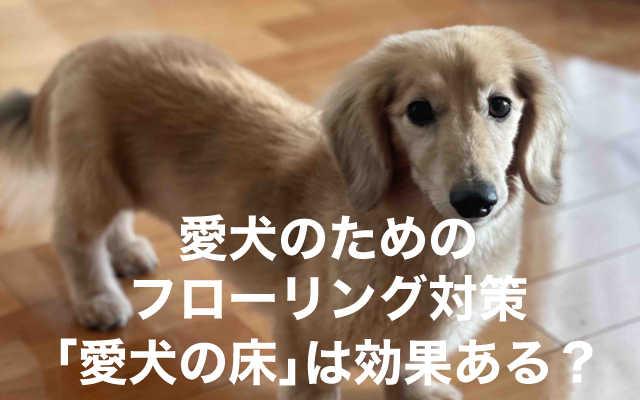 愛犬の床について