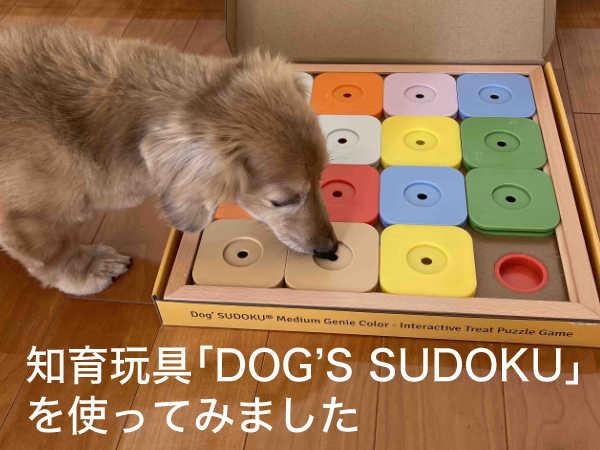 犬の認知症予防に今からできること。犬用知育玩具「DOG'S SUDOKU」を使ってみた。