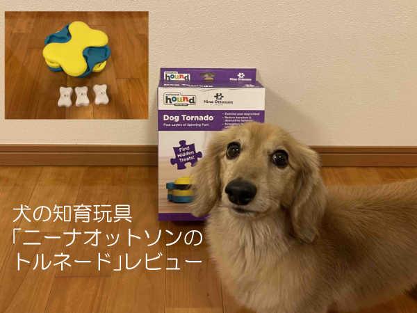 犬の知育玩具「ニーナオットソンのトルネード」レビュー!初心者にもオススメ4つの遊び方