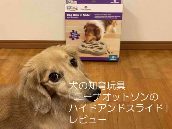 犬のおもちゃ「ハイドアンドスライド」