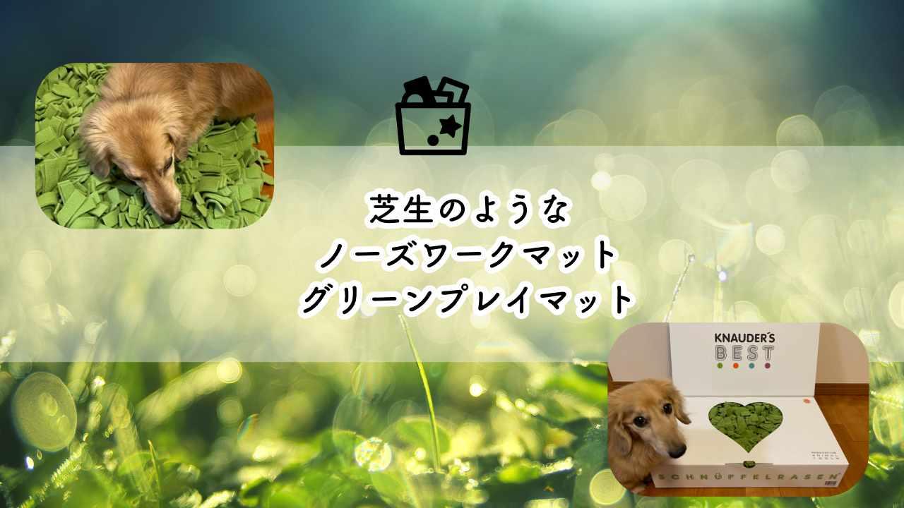 100%ハンドメイド!犬にも人にも優しい芝生のようなノーズワークマット「グリーンプレイマット」の良い点と悪い点